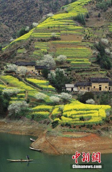 新安江上游的村落.谢光辉 图片来源:ctpphoto