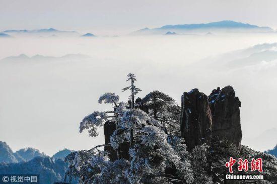当日,安徽黄山风景区雪后放晴,出现了大面积的雪凇景观.
