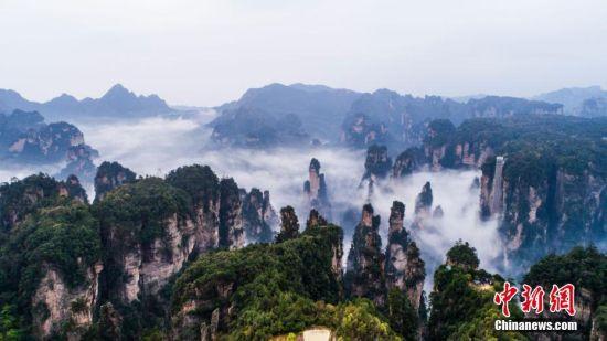 3月30日,张家界武陵源风景区出现梦幻般的云海,壮观迷人,如入画境.