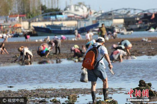金秋退大潮时节,许多市民和游客来到青岛栈桥海滩赶海拾趣.
