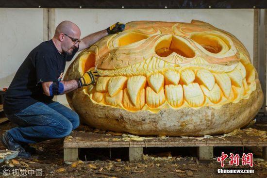 英男子雕刻巨型南瓜灯 重913公斤挑战世界纪录