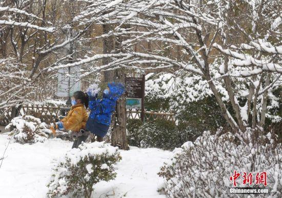 济南市民佩戴口罩赏春雪
