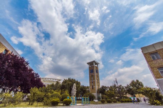聊城大学 王宪伟 东昌学院 校园一角